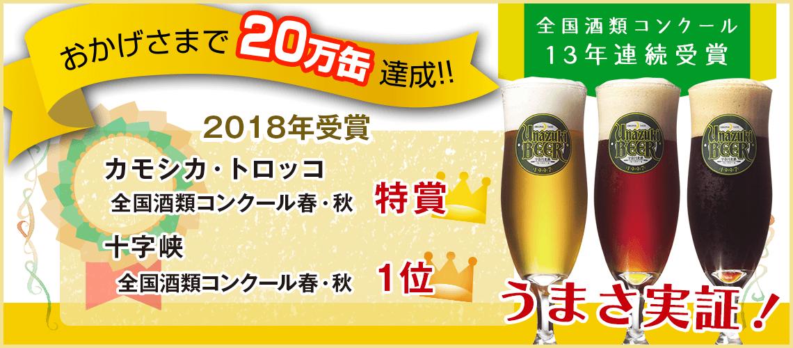 2017受賞歴
